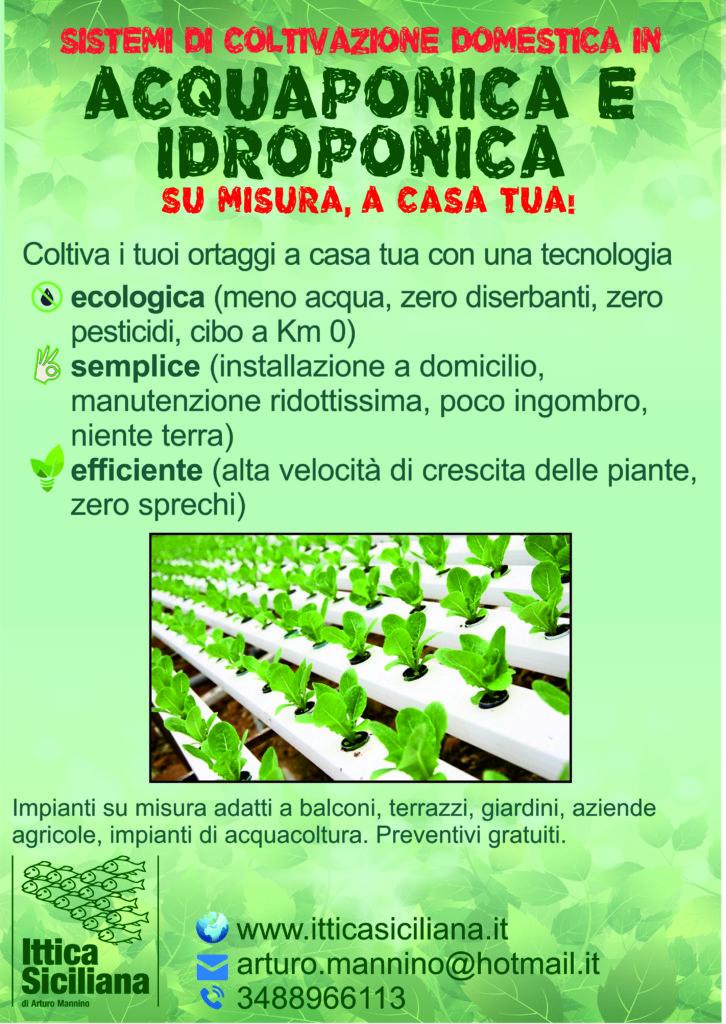 Kit acquaponica idroponica vendita sistemi Ittica siciliana