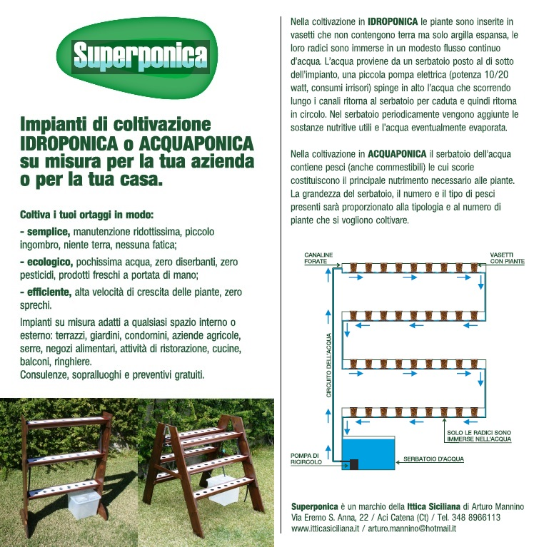 Sistemi coltivazione idroponica orto casa piante